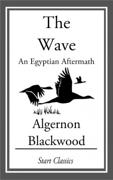 The wave: an Egyptian aftermath cover image