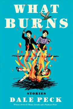 What burns : stories cover image