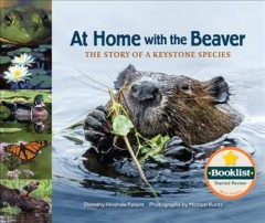 At home with the beaver : the story of a keystone species cover image