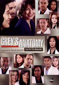 Grey's anatomy. Season 10 live for the moment cover image