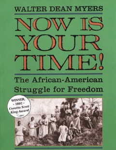 Book jacket for Now is your time! : the African-American struggle for freedom