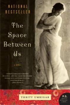 Book jacket for The space between us [BOOK DISCUSSION]