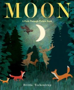 Book jacket for Moon : a peek-through picture book