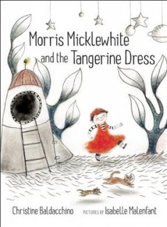 Book jacket for Morris Micklewhite and the tangerine dress /