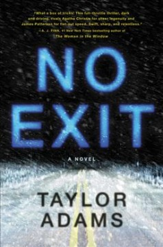 Catalog record for No exit : a novel