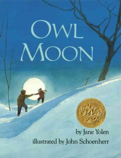 Catalog record for Owl moon