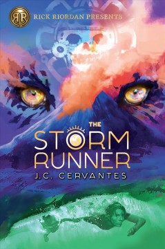 Catalog record for The storm runner