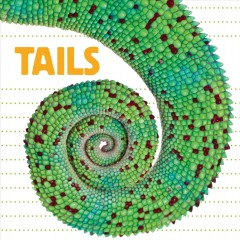 Catalog record for Tails.
