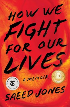 How we fight for our lives : a memoir book cover