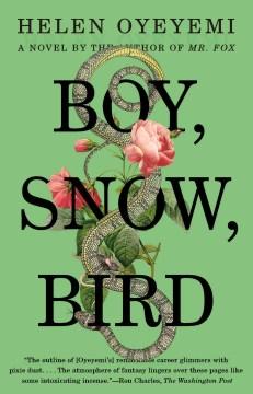 Boy, snow, bird book cover