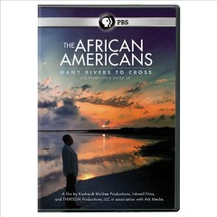 The African Americans collection. book cover