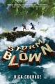 Stormblown