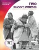 Two bloody Sundays : civil rights in America and Ireland