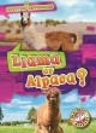 Llama or alpaca?
