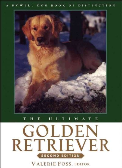 The ultimate golden retriever