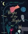 Bright in the night Book Cover