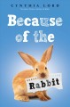 Because of the rabbit Book Cover