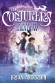 Rise of the shadow Book Cover