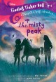 Up the Misty Peak Book Cover