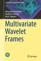 Multivariate Wavelet Frames [electronic resource] / by Maria Skopina, Aleksandr Krivoshein, Vladimir Protasov.