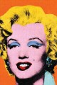 Andy Warhol Marilyn 300 Piece Jigsaw Puzzle (Puzzle Book) at Sears.com