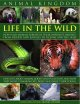 Animal Kingdom: Life in the Wild: How Wild Animals Survive in Their Different Habitats, From Deserts and Jungles to Oceans and The Skies (Hardcover Book) at Sears.com