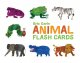 Animal Flash Cards (Cards Book) at Sears.com