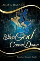 When God Comes Down: An Advent Study for Adults (Paperback Book) at Sears.com