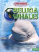 Beluga Whales (Library Book) at Sears.com