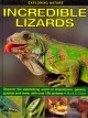Incredible Lizards: Discover the Astonishing World of Chameleons, Geckos, Iguanas and More, With over 190 Pictures (Hardcover Book) at Sears.com