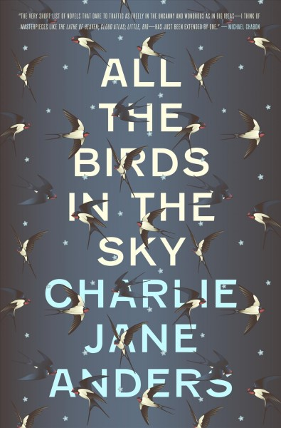 book cover of All the birds in the sky
