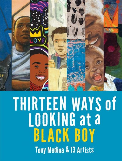 Book cover of Thirteen Way of Looking at a Black Boy