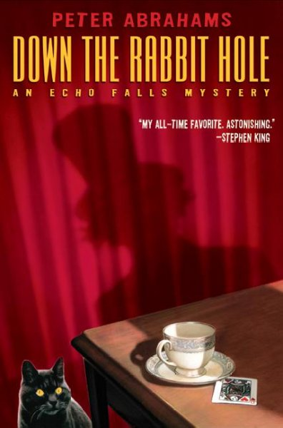 Down the rabbit hole : an echo falls mystery /