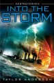 Into the storm : Destroyermen /