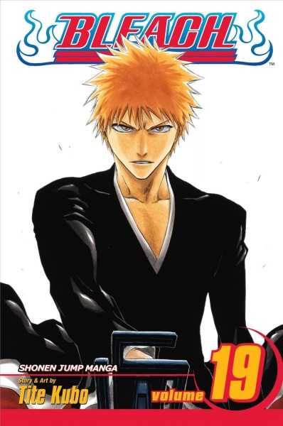 Bleach. 19, The black moon rising /