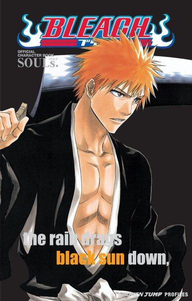 Bleach Souls official character book /