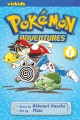 Pokemon adventures /