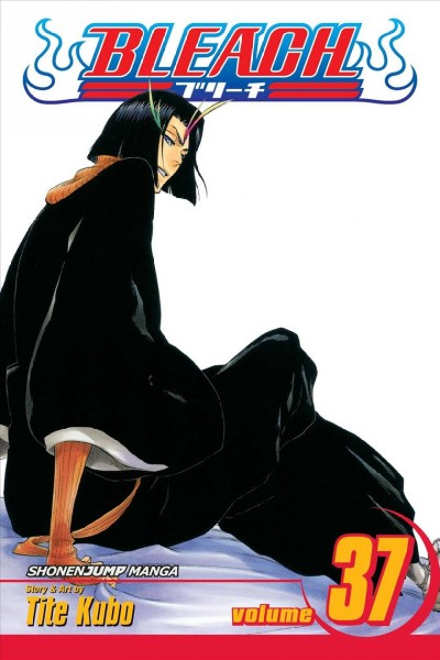 Bleach. 37, Beauty is so solitary /