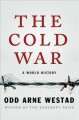 THE COLD WAR : A WORLD HISTORY