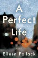 [A perfect life : a novel<br / >Eileen Pollack.]