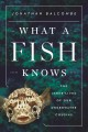 WHAT A FISH KNOWS : THE INNER LIVES OF OUR UNDERWATER COUSINS