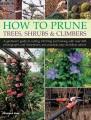 HOW TO PRUNE TREES, SHRUBS & CLIMBERS : A GARDENER