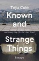 KNOWN AND STRANGE THINGS : ESSAYS