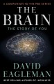 THE BRAIN : [THE STORY OF YOU]