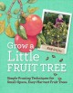 GROW A LITTLE FRUIT TREE : SIMPLE PRUNING TECHNIQUES FOR SMALL-SPACE, EASY-HARVEST FRUIT TREES