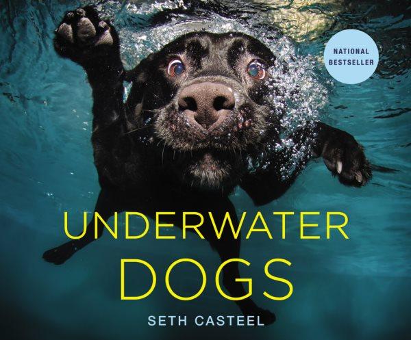 Underwater dogs /