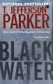Show product details for Black Water: A Merci Rayborn Novel