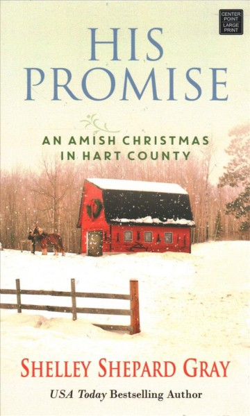 His promise : an Amish Christmas in Hart County (large print)