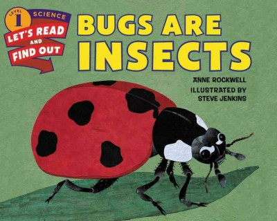 Bugs are insects /
