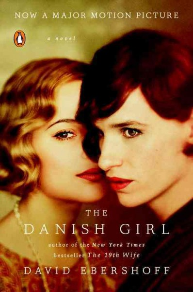 The Danish girl : : a novel